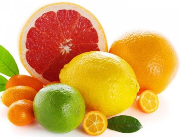 Importer from Ukraine is looking for CITRUS FRUITS