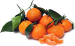 Importer from England is looking for SATSUMAS