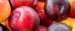 Buyer from United Arab Emirates is looking for STONE FRUITS
