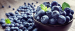 Buyer from China is looking for BLUEBERRIES